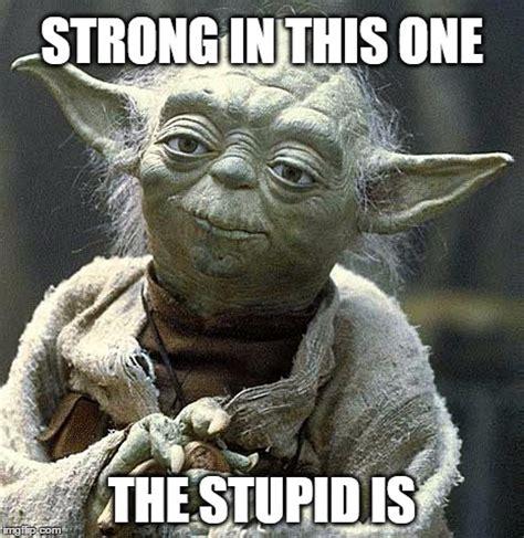 Yoda Meme Generator - yoda on stupidity imgflip
