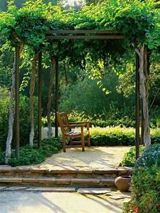 Plantes Grimpantes Mur : mur v g tal et jardin vertical id es magnifiques ~ Melissatoandfro.com Idées de Décoration