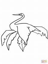 Coloring Stork Sitting Pages Storks Wood Cliparts Printable Library Clipart sketch template