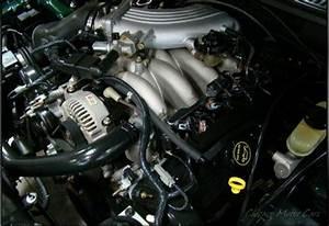 Mustang 130 Amp Alternator  96 Bullitt  Mach 1 4