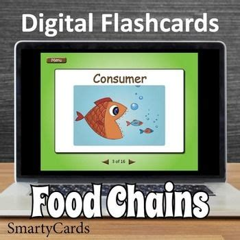 17 Best Images About Animal Food Chains On Pinterest  Studentcentered Resources, Food Chain