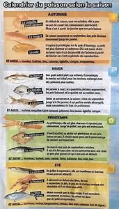 Le Prix Le Moins Cher : le calendrier pour payer moins cher poissons et fruits de mer selon la saison ~ Medecine-chirurgie-esthetiques.com Avis de Voitures