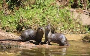 Parque Nacional El Rey ~ #ParquesYMuseos ~ Infobae