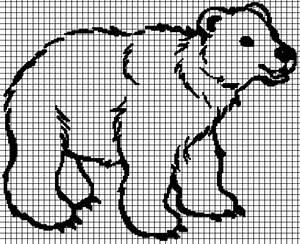 Polar Bear  Graph And Row