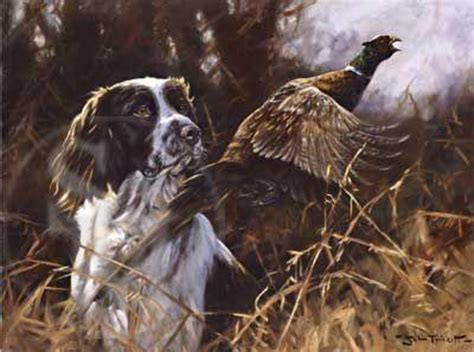 pheasant flushed springer print by john trickett