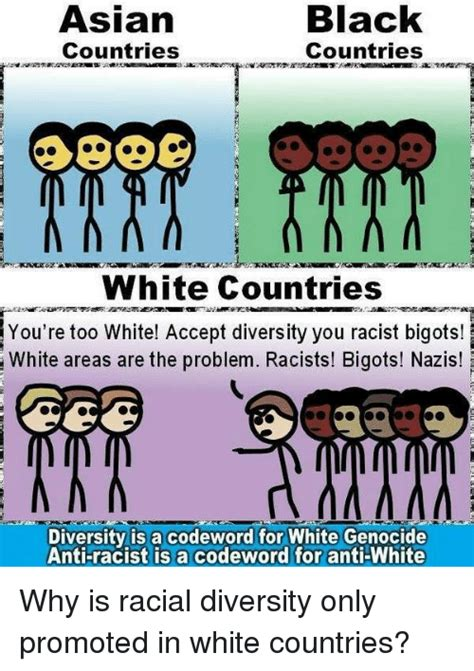 Anti Racist Memes - black asiarn countries countries white countries you re