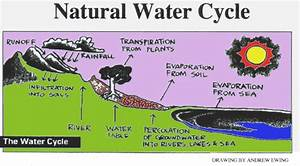 Teaching Kids The Steps Of The Water Cycle Through Video