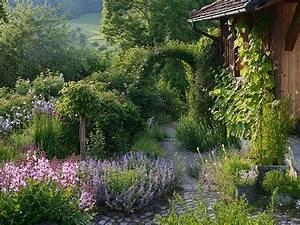 Rosenbeet Mit Stauden : begleitpflanzung zu alten rosen ~ Frokenaadalensverden.com Haus und Dekorationen