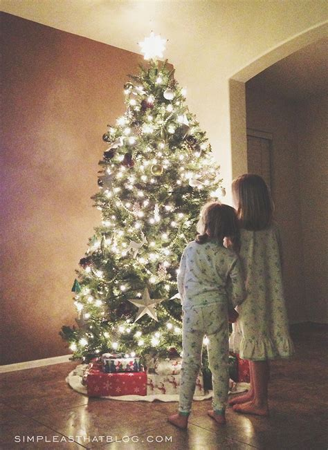 simple but beautiful christmas tree pictures tips for taking beautiful tree photos