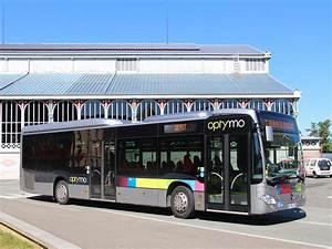 Mercedes Belfort : trans 39 bus phototh que autobus mercedes citaro le optymo belfort ~ Gottalentnigeria.com Avis de Voitures