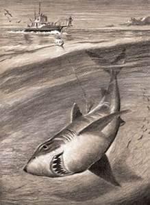Great White Shark Faber-Castell drawing pencils. #shark # ...