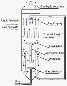 Schematic Diagram Of An Internal Loop Reactor With