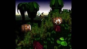Donkey Kong Country - Barrel Cannon Canyon! All Secrets ...