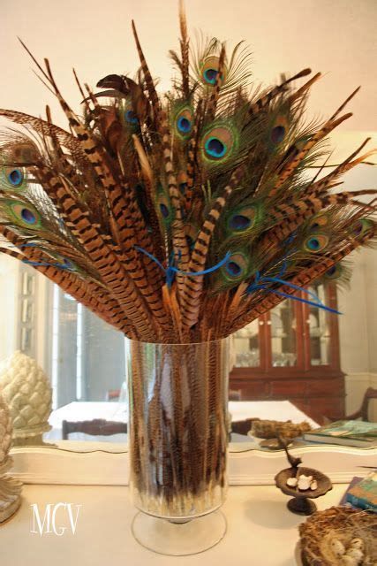 feathers  home decor pheasant ringneck