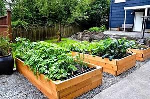 Raised Bed Vegetable Garden Plans Garden Landscap raised ...