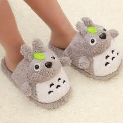 Funny House Slippers for Women