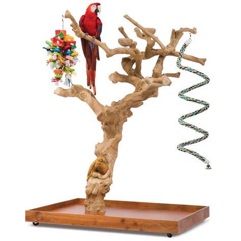 the handcarved coffea tree bird perch hammacher schlemmer