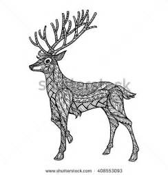 Deer Animal Coloring Pages Adult