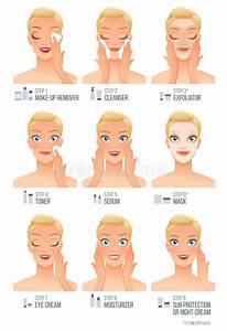 Basic Women Facial Skincare Steps. Vector Infographic ...