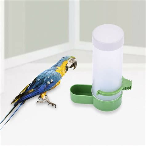 Parrot Feeder by Bird Feeder Food Water Feeding Automatic Drinker Parrot