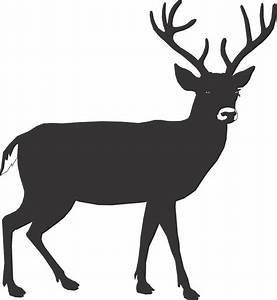 Buck Deer Outline - ClipArt Best