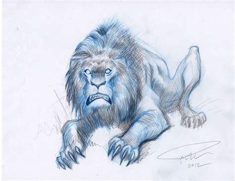 quocs animal drawings