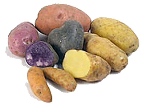 conservation des pommes de terre yoursuperbowlad