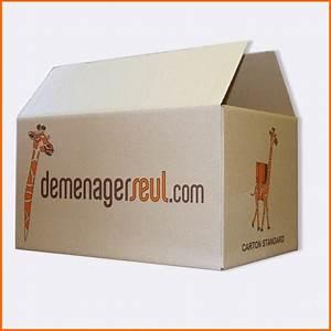 Carton De Déménagement Gratuit : cartons d m nagement pas cher carton de d m nagement ~ Premium-room.com Idées de Décoration