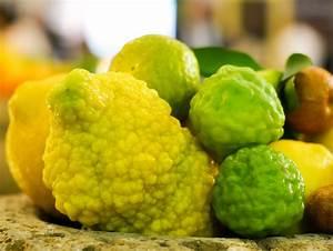 Pflanzen Bestimmen Nach Bildern : die 39 rauhe 39 zitrone citrus jambhiri ~ Eleganceandgraceweddings.com Haus und Dekorationen