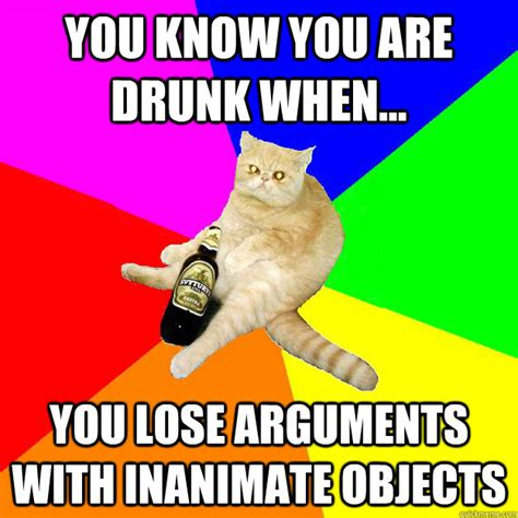 Drunk Cat Meme - you know you are drunk when you lose arguments with inanimate objects drunk cat quickmeme