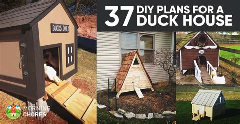 37 Free Diy Duck House / Coop Plans & Ideas That You Can