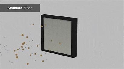 Filter Air Hepa Xl Max Purifier Filtration