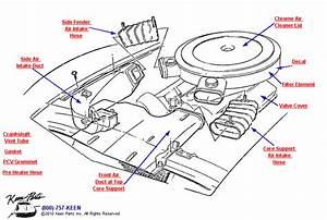 1981 Corvette Air Cleaner Parts