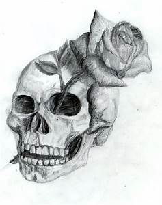 +real sketched drawings | Skull and Rose by ~Dyslogistic ...