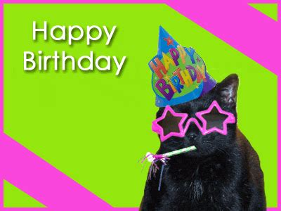 happy birthday youre  cool cat happy birthday