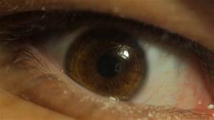 Extreme close up human brown eye iris in 4K UHD video ...