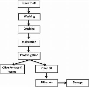 Flow Chart Of Olive Oil Extraction