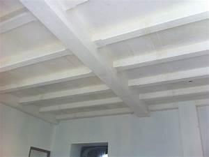 Peindre Un Plafond Facilement : comment peindre un plafond sans traces comment peindre un ~ Premium-room.com Idées de Décoration