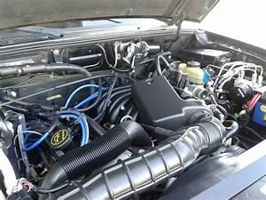 Ford Engine 3 0 V6 2002 Ranger  Ford  Free Engine Image For User Manual Download