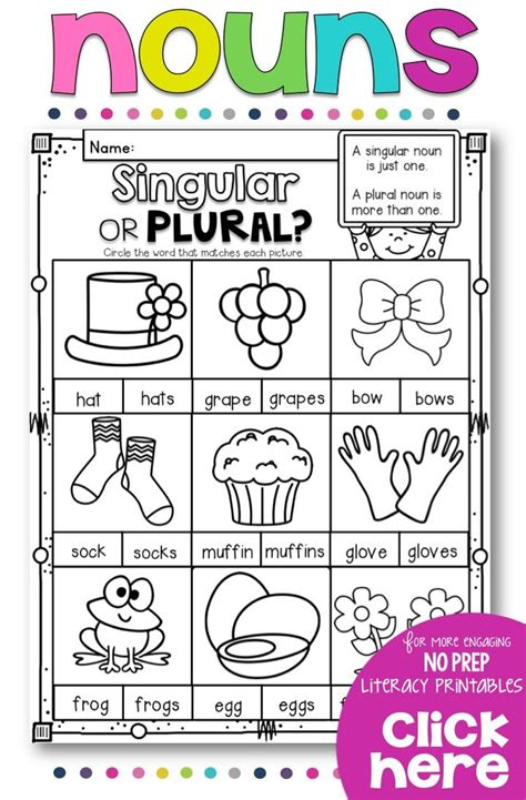 best 25 irregular plural nouns worksheet ideas on