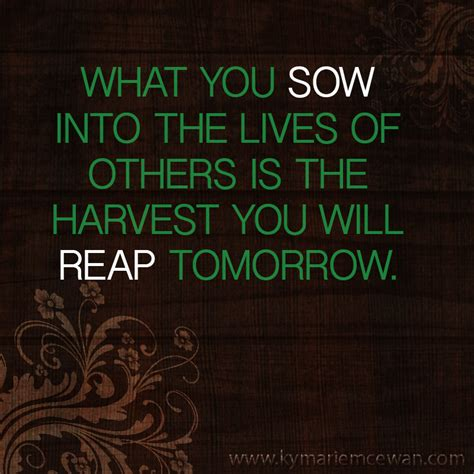 Top 100 You Reap What You Sow Quotes