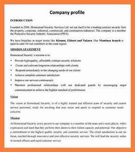 6 sample company profile doc company letterhead for Company profile template for small business