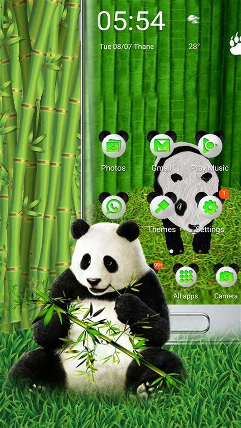 wallpaper gambar panda keren