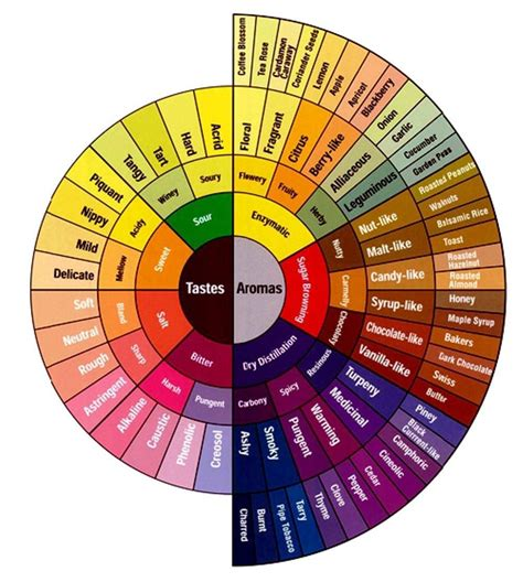 the color wheel paint store jpg 1000 215 1114 draw step by