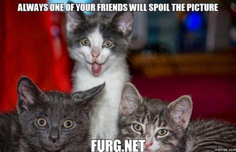 Crazy Friends Meme - crazy friends memes com