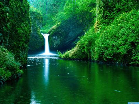 nature wallpapers hd nice wallpapers