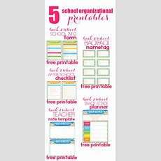 5 Back To School Organizational Printables