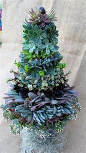 items similar to succulent christmas tree on etsy
