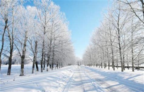 highdefinition gambar pemandangan musim dingin musim dingin gratis foto  gratis