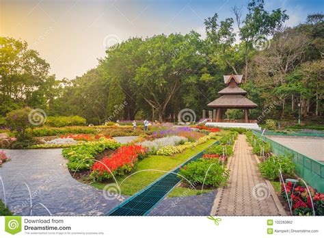 Sty S Garden - colorful landscape view of flower garden and northern thai